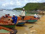 Establishing and Managing Fisheries Refugia